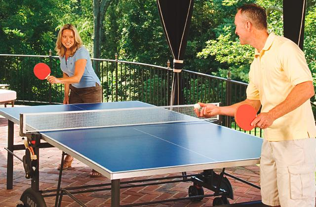 Meilleures table de tennis de table
